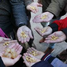 En los ensayos de las 12 campanadas en la Puerta del Sol no se comen 12 uvas, sino cualquier otra cosa