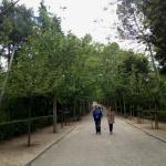 Parques especiales para ir con niños en Madrid