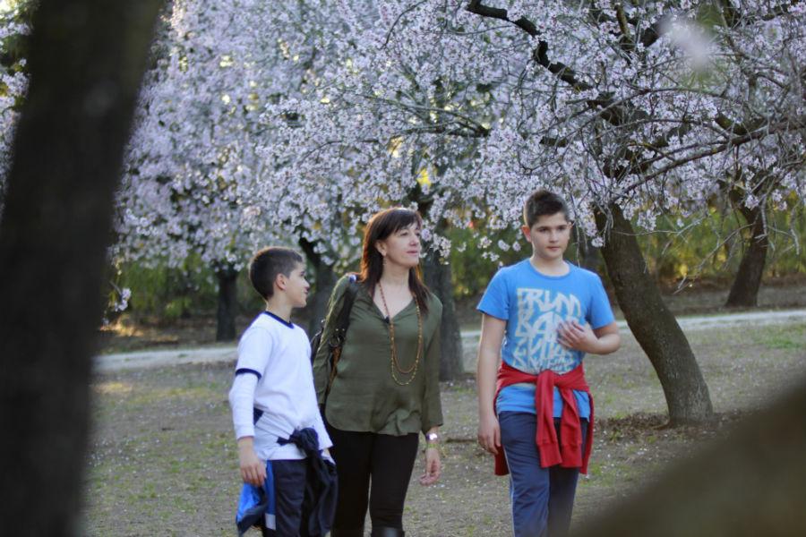 Paseamos entre los almendros en flor