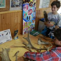 Naturanavas organiza actividades para niños
