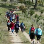 Ruta Juegos en la Naturaleza, en Madrid
