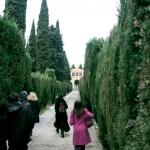 Visita al Cementerio de San Isidro