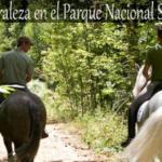 Turismo de naturaleza en Guadarrama con Navalmedio