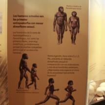 Dinópolis no sólo trata de dinosaurios: es un gran centro paleontológico y arqueológico.