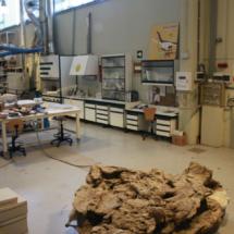 La paleontología es el alma de Dinópolis