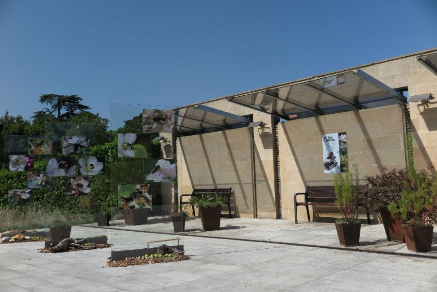 Jard n bot nico de gij n for Jardin botanico talleres