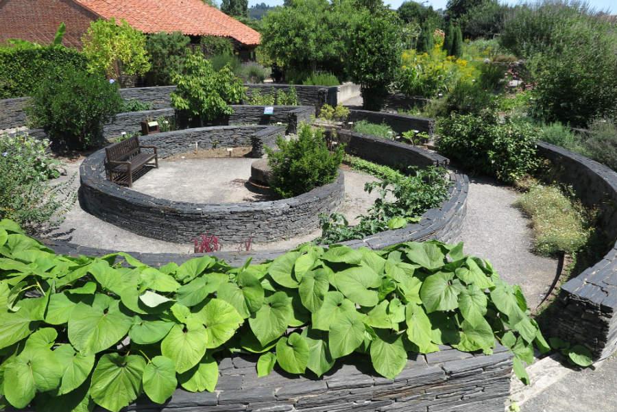 Jard n bot nico de gij n for Talleres jardin botanico