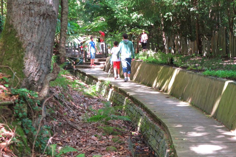 Visitamos, con los niños, el Jardín Botánico de Gijón