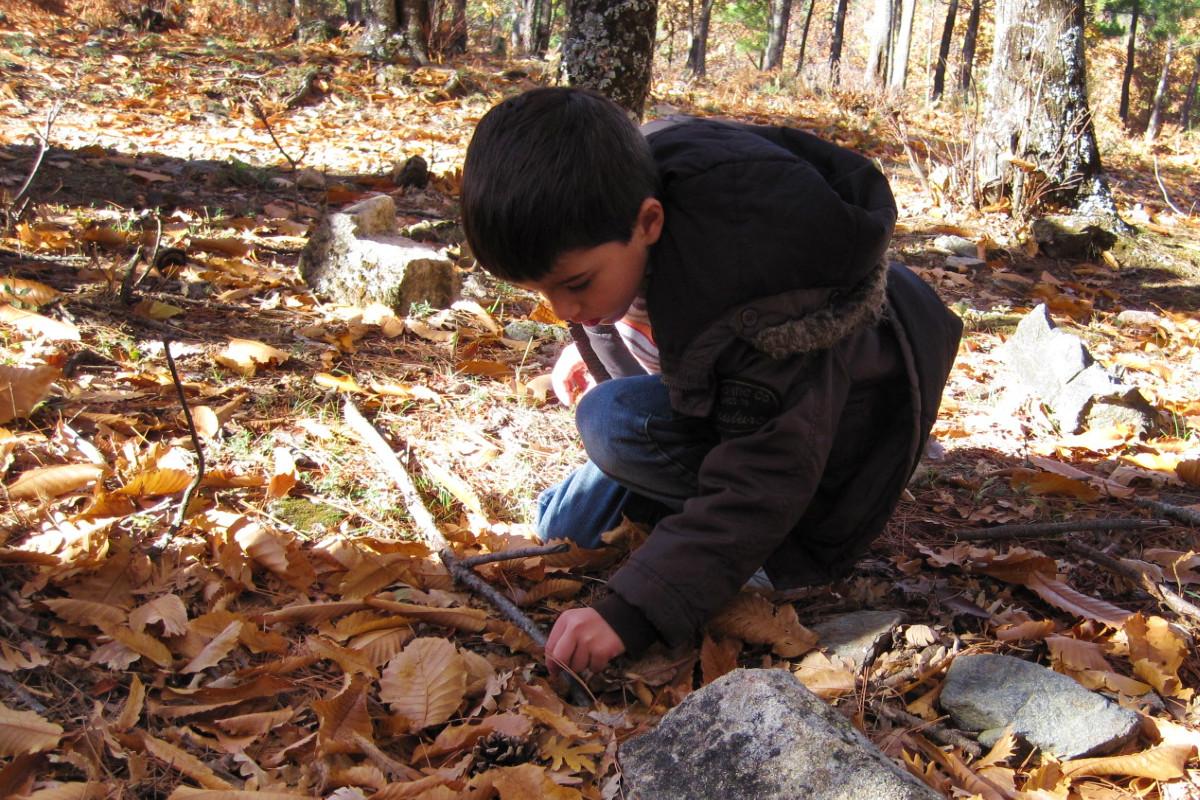 Cosas que hacer en otoño con peques