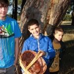 Guía para coger níscalos en Cantalejo (Segovia)