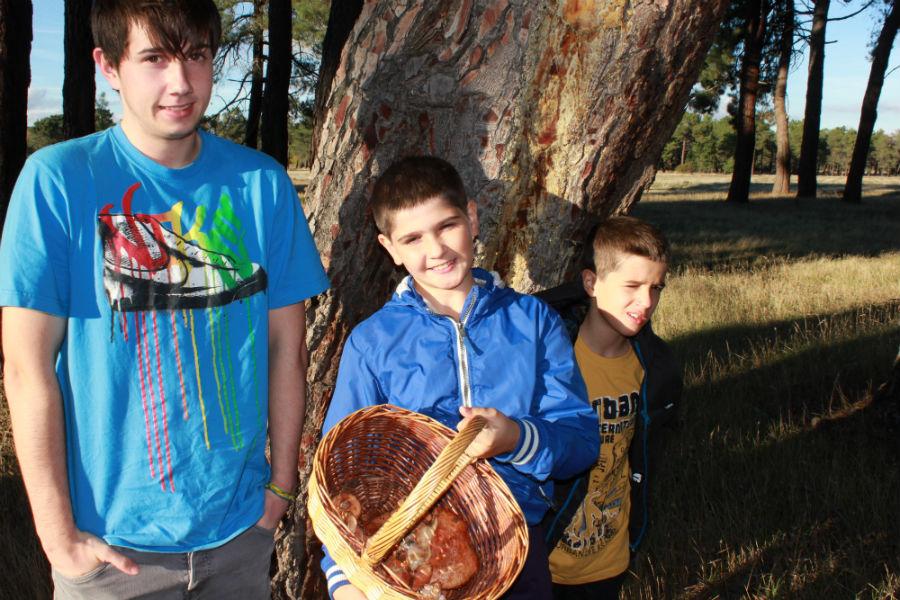 Nos vamos de excursión a Cantalejo, Segovia, para recoger níscalos