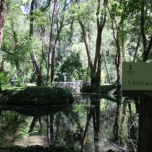 Curso del río Piedra, en Zaragoza