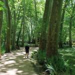 4 espacios naturales para visitar en otoño