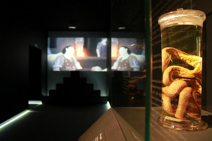 Exposición sobre Cleopatra en Madrid: audiovisual