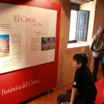 Museo de la Cereza del Valle del Jerte