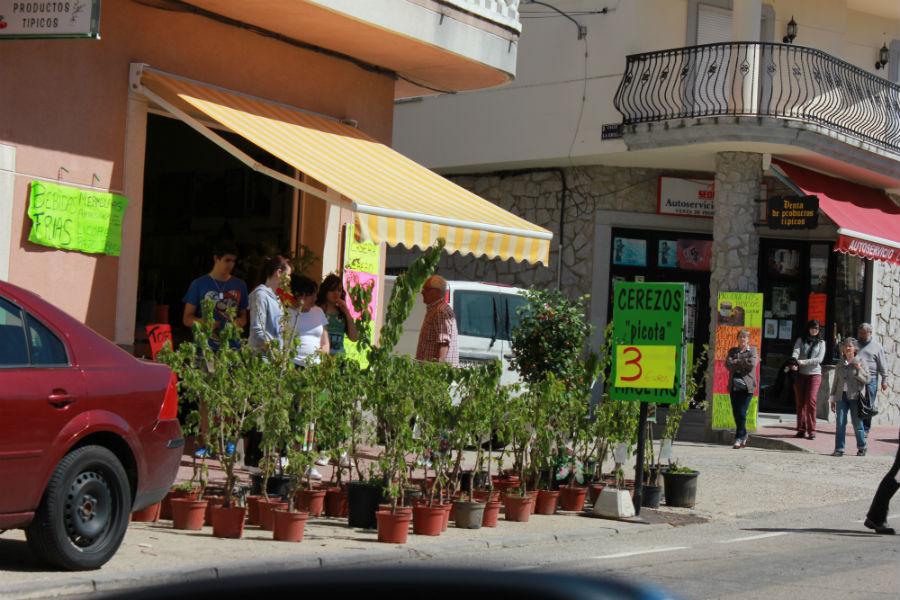 Puesto de venta de cerezos del Valle del Jerte