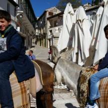 Paseo en burro por Chinchón