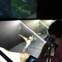 Restos arqueológicos en el Museo de San Isidro