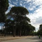 Casa de Campo de Madrid: todo lo que ofrece para un plan en familia