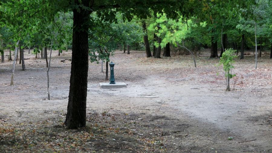 Paseo de la Casa de Campo de Madrid
