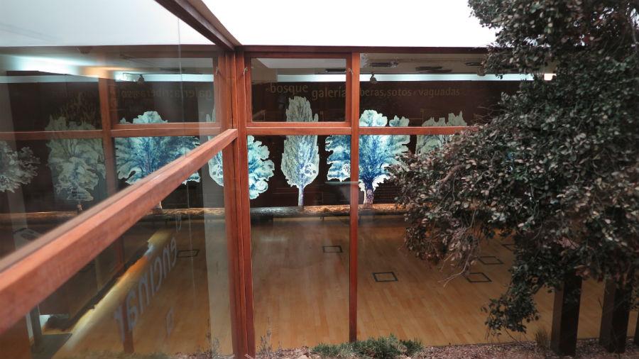Centro de Educación Ambiental de la Casa de Campo