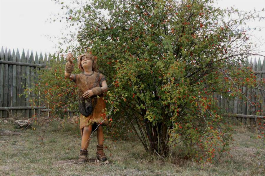 Reproducción del poblado prehistórico