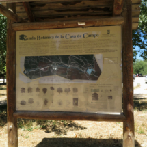 Panel de información botánica de la Casa de Campo