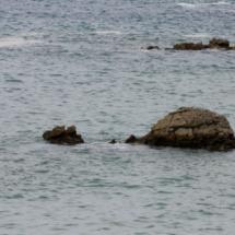 Dromedario sumergido de la playa del Camello