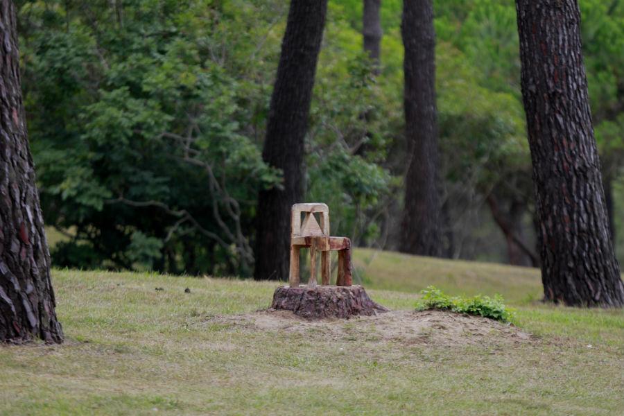 Escultura de madera en la Península de la Magdalena, en Santander