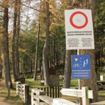 Tipos de visita a la Selva de Irati
