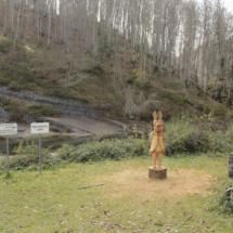 Paisaje de la Selva de Irati, lleno de historia y leyendas...