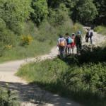 Ruta por Cercedilla: Camino de los Campamentos