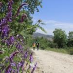 7 rutas y excursiones cerca de Madrid para Semana Santa