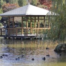 Parque japonés Yamaguchi, en Pamplona