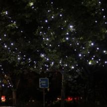 luces-navidad-madrid-16_17-01