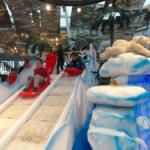 Navidad Polar en Islazul, Madrid, con trineos y duendes