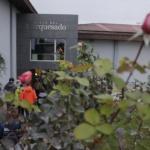 Enoturismo divertido para familias con Bodegas Valdemar