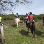Las Médulas, a caballo, y otras actividades