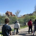 Las Médulas: una mina de oro de la época romana