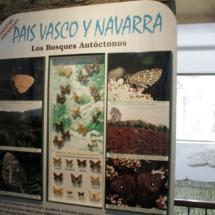 En Insectpark puedes ver qué mariposas habitan en cada Comunidad Autónoma
