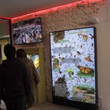 Pantalla explicativa en el Insectpark