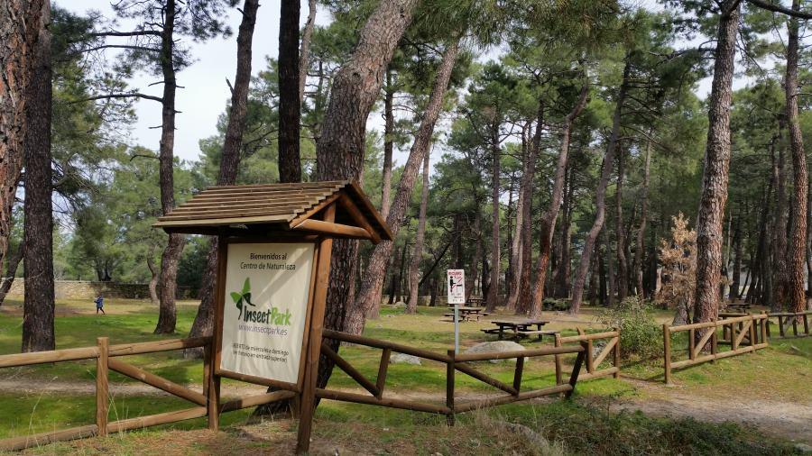 Jardín del Insectpark