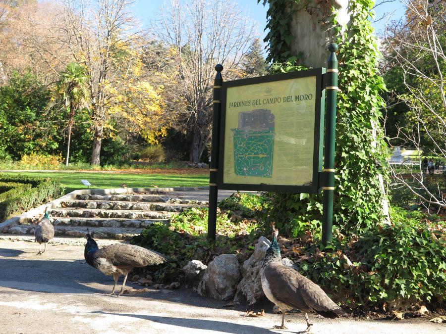 Cartel informativo de los Jardines del Campo del Moro