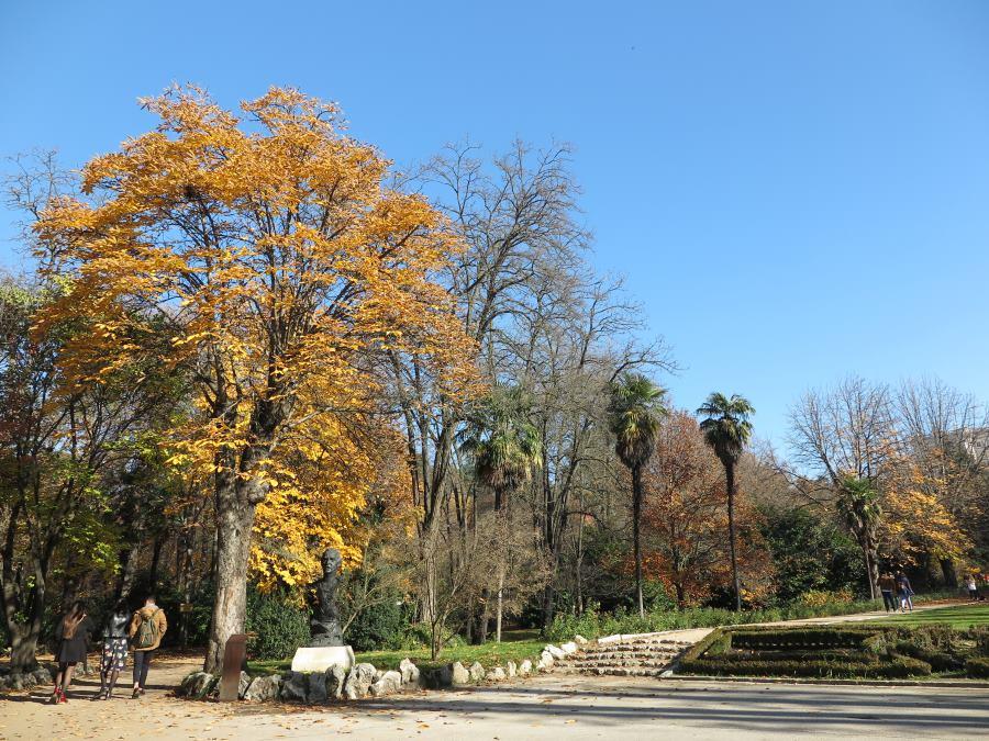 Panorámica del Campo del Moro, en Madrid, en Otoño
