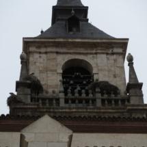 Torre con cigüeñas en Alcalá de Henares