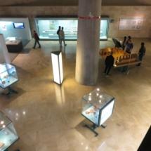 Vitrinas con objetos del Imperio Romano en el Museo del Foro de Zaragoza