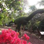 El Bosque Encantado: un parque de setos y hadas