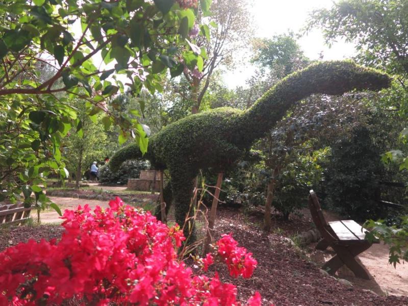 El bosque encantado un parque de setos y hadas for Jardin botanico el bosque encantado