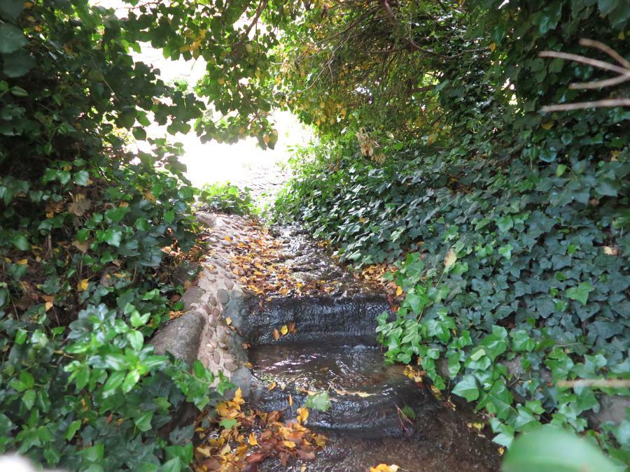 El bosque encantado un parque de setos y hadas for Piscina climatizada san martin de valdeiglesias