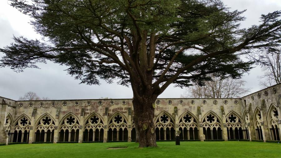 Claustro de la catedral de Salisbury